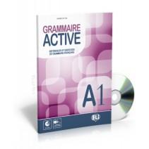 Grammaire Active A1 + audio CD - 9788853615091