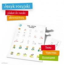 Plakat słówka rosyjskie: Тело - чувства - позиции - 9788364730221